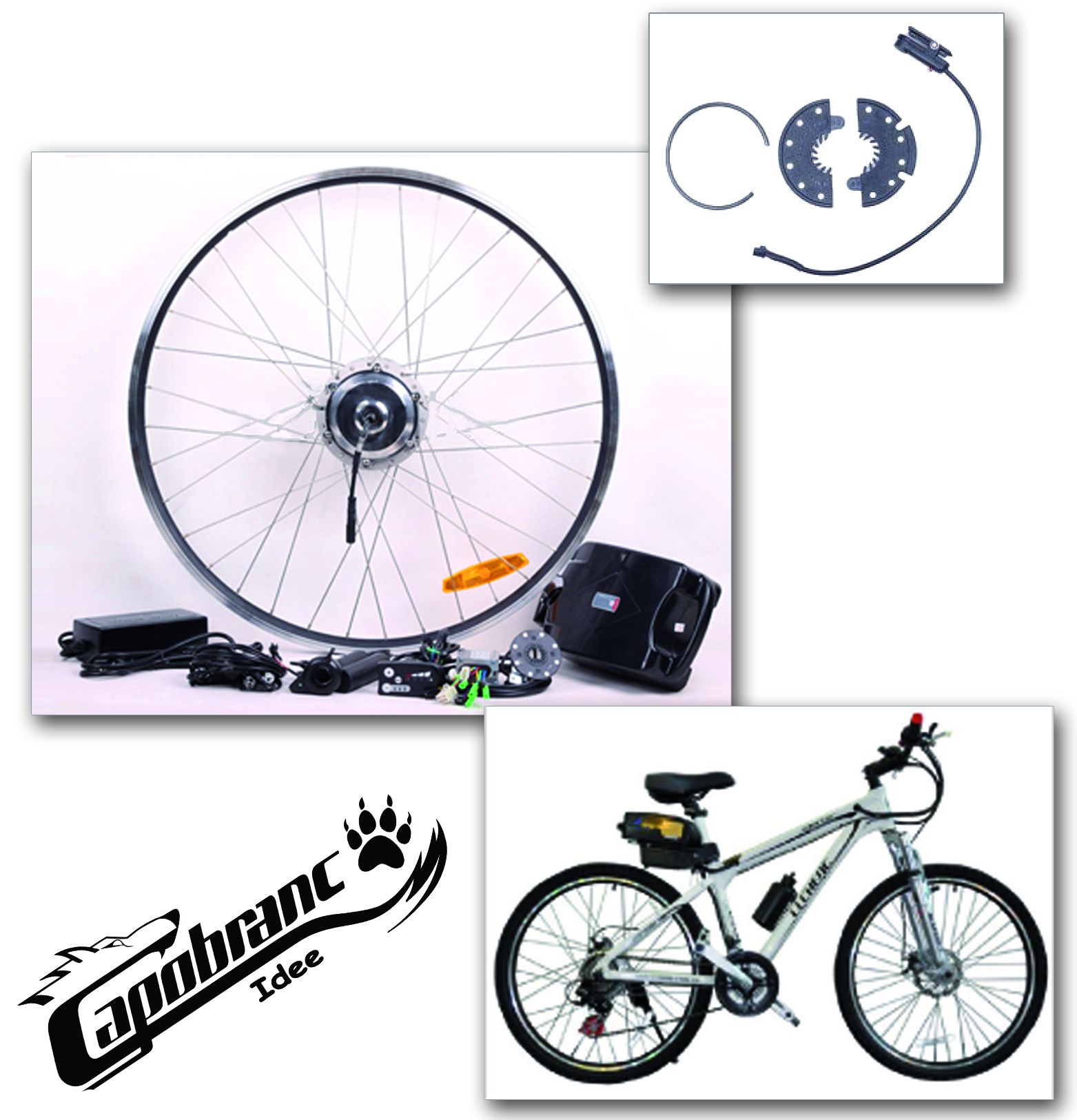 Kit bici elettrica 250w 36v con batteria litio sottosella